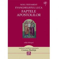 Faptele apostolilor | Cristian Badilita