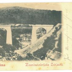 4630 - ANINA, Caras Severin, Railway Bridge, Litho - old postcard - used - 1900, Circulata, Printata