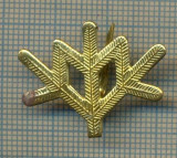 Y 1821 INSIGNA - MILITARA -SEMN DE ARMA -VANATORI DE MUNTE  -PENTRU COLECTIONARI