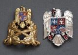 Elemente de coifura romanesti - cuc - insemn - Insigna