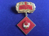 Insignă pionieri - Insignă România - Pionier Instructor UTC