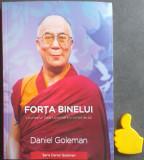 Forta binelui Viziunea lui Dala Lama pentru lumea de azi  Daniel Goleman