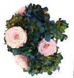 Aranjament 7 trandafiri criogenati naturali și hortensie criogenata naturala în vaza