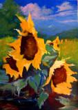 Floarea soarelui, Flori, Ulei, Impresionism