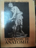 COMPENDIU DE ANATOMIE BUCURESTI 1988-MIRCEA IFRIM,GHEORGHE NICULESCU