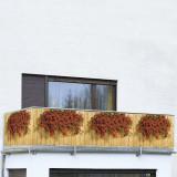 "Prelata pentru balcon Muscate"""""