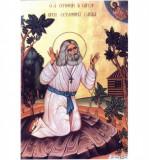 Icoana Sfantul Serafim de Sarov