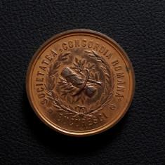 Medalie 1880 Concordia - Expo. de arte si industrii - Onoare si incurajare