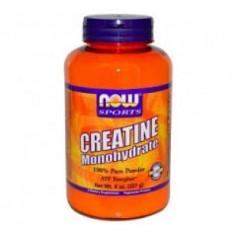 Now Creatine Monohydrate 227g