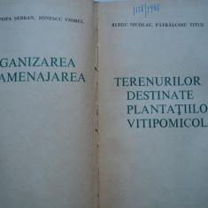Organizarea si amenajarea terenurilor destinate plantatiilor vitipomicole, Alta editura, 1967