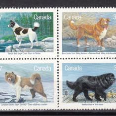 Canada 1988  fauna  caini  MI 1097-1100  MNH  w59