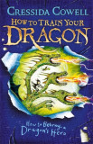 How to Train Your Dragon: How to Betray a Dragon's Hero Book 11