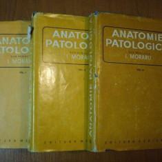 ANATOMIE PATOLOGICA de I. MORARU VOL.I-III 1980