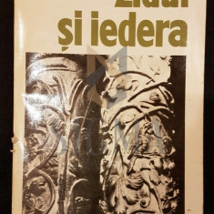 MIRCEA MALITA (DEDICATIE CATRE CORNELIU BABA) - ZIDUL SI IEDERA