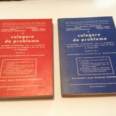 Culegere De Probleme In Sprijinul Candidatilor - Nicolae Teodorescu 2 VOLUME
