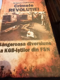 CRIMELE REVOLUTIEI SANGEROASA DIVERSIUNE A KGB-ISTILOR DIN FSN GRIGORE CARTIANU
