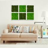 Tablou licheni Artflora Uni GreenApple MDF Alb 25CM