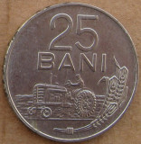 25 Bani 1966