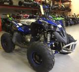 ATV AVENGER PRIME 49 cc import Germania 2020!
