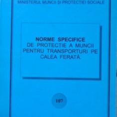 NORME SPECIFICE DE PROTECTIE A MUNCII PENTRU TRANSPORTURI PE CALEA FERATA - NECU
