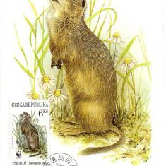 CEHIA 1996, CM, Fauna, Flora, WWF  Maxime