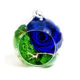 Cumpara ieftin Aranjament trandafiri criogenati MF254