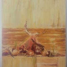 Natura statica, studiu de atelier// ulei pe panza, Cristina Nedelea