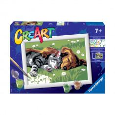 Pictura pe numere Ravensburger - Catelus si pisicuta