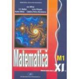 Manual matematica M1 clasa a XI-a - Ion Mihai