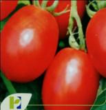 Seminte rosii MISSOURI POP VRIEND si PIETERPIKZONEN, 50 g
