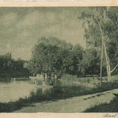 Carte postala Craiova Parcul Bibescu interbelica