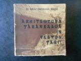 ARHITECTURA TARANEASCA SI ELEMENTELE EI DECORATIVE IN VESTUL TARII