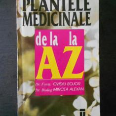 Ovidiu Bojor - Plante medicinale de la A la Z