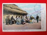 Plantatori de tutun la Isaccea, Circulata, Printata