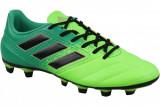 Cizme de fotbal Adidas Ace 17.4 FxG BB1051 pentru Barbati, 41 1/3, Verde