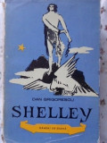 SHELLEY - DAN GRIGORESCU