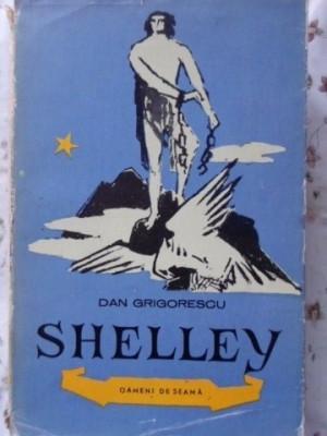 SHELLEY - DAN GRIGORESCU foto
