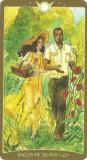 Volum 2 Tarotul Cartea Umbrelor-Carti de Tarot/ORIGINAL/sigilat,ed lim-LIVR IMED