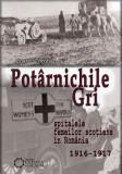 Potârnichile gri. Spitalele Femeilor Scoțiene în România (1916-1917)
