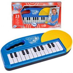 Orga muzicala Simba