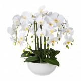 Cumpara ieftin Aranjament in ghiveci ceramic, Orhidee Phalenopsis Alb, H54 cm