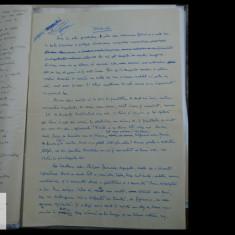 Manuscris / Scrisoare scrisa si semnata de Demostene Botez - 2 pag