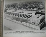 Fotografie Fabrica de produse lactate București