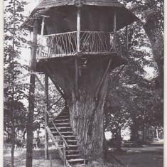 bnk cp Ramnicu Valcea - Pavilion din parcul V I Lenin - circulata
