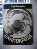 ANAMORFOZE -Jurgis Baltrusaitis