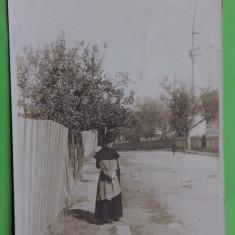 Constanta Dobrogea