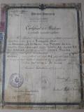 Certificat absolvire curs secundar inferior Bairamcea Cetatea Alba Basarabia