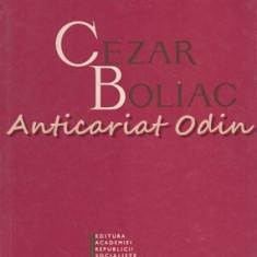 Cezar Boliac - Ovidiu Papadima