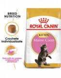 ROYAL CANIN Maine Coon Kitten hrană uscată pentru pisoi Maine Coon până la vârsta de 15 luni 20 kg (2 x 10 kg)