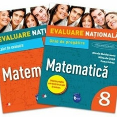Evaluare nationala. Matematica. Ghid de pregatire. Clasa a VIII-a/***